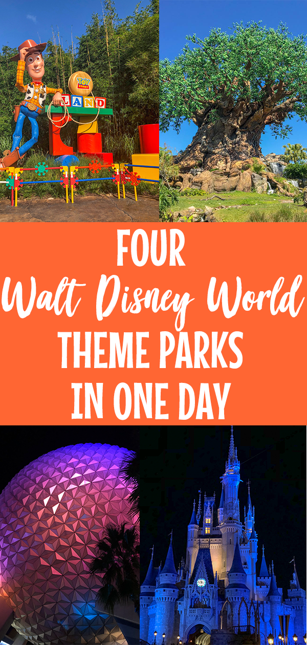 disney, disney world, walt disney world, disney in one day