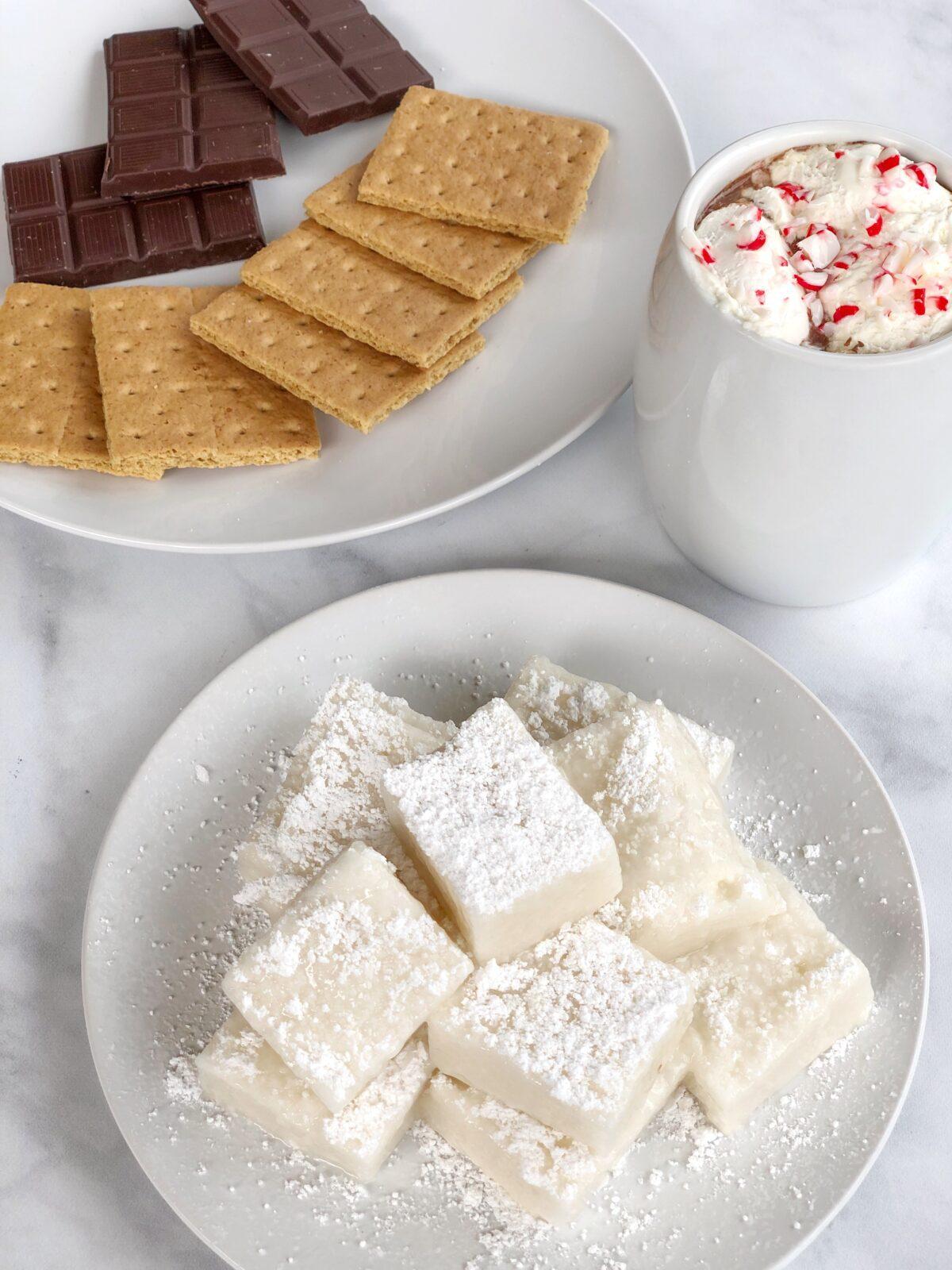 Vegan Dairy Free Hot Chocolate Recipe