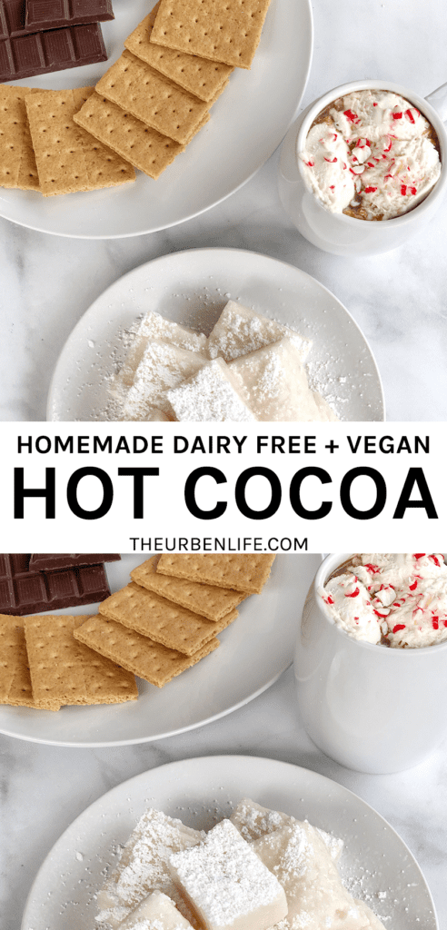 Homemade dairy free hot cocoa! Recipe for vegan hot chocolate for two